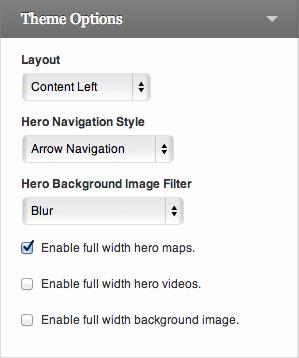 Theme Options customizer settings.